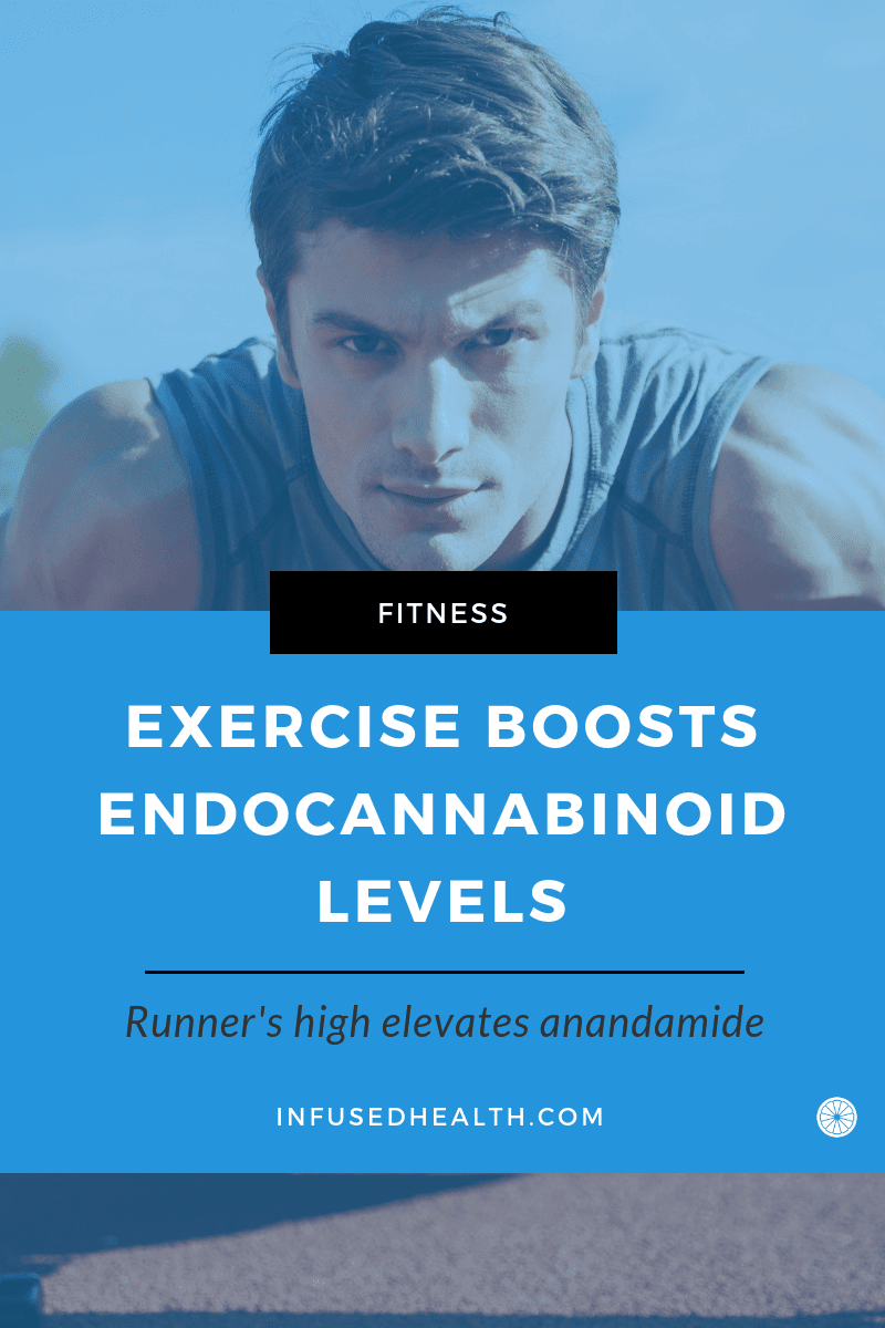 Exercise Boosts Your Endocannabinoid Levels