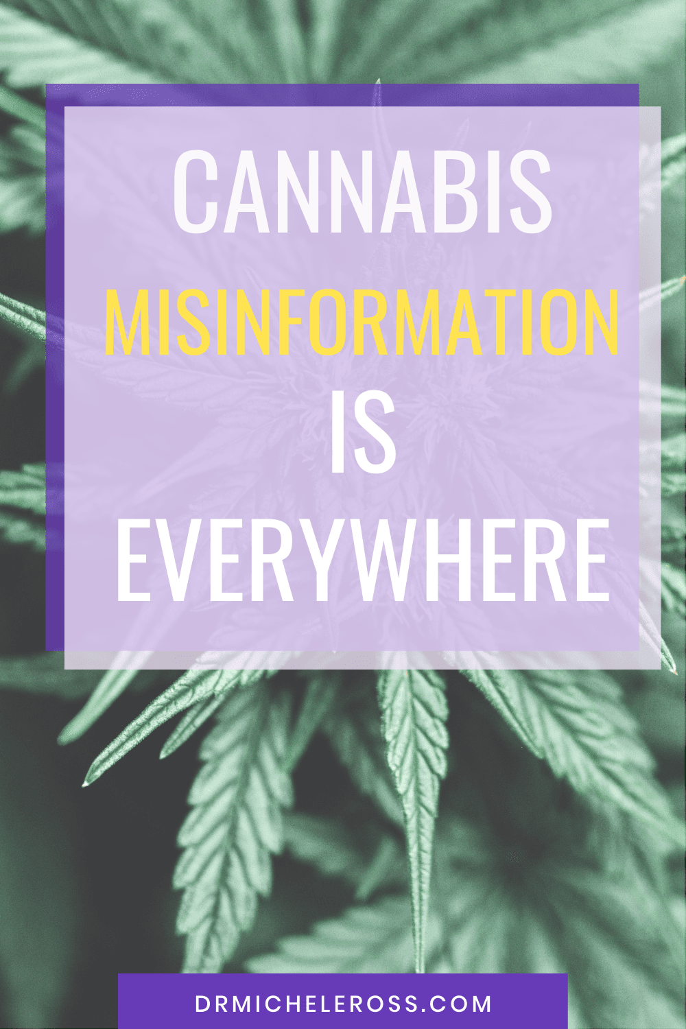 Don\'t Fall For Cannabis Misinformation