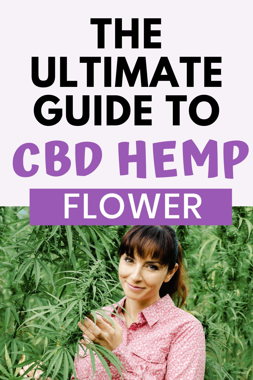 The Ultimate Guide To CBD Hemp Flower