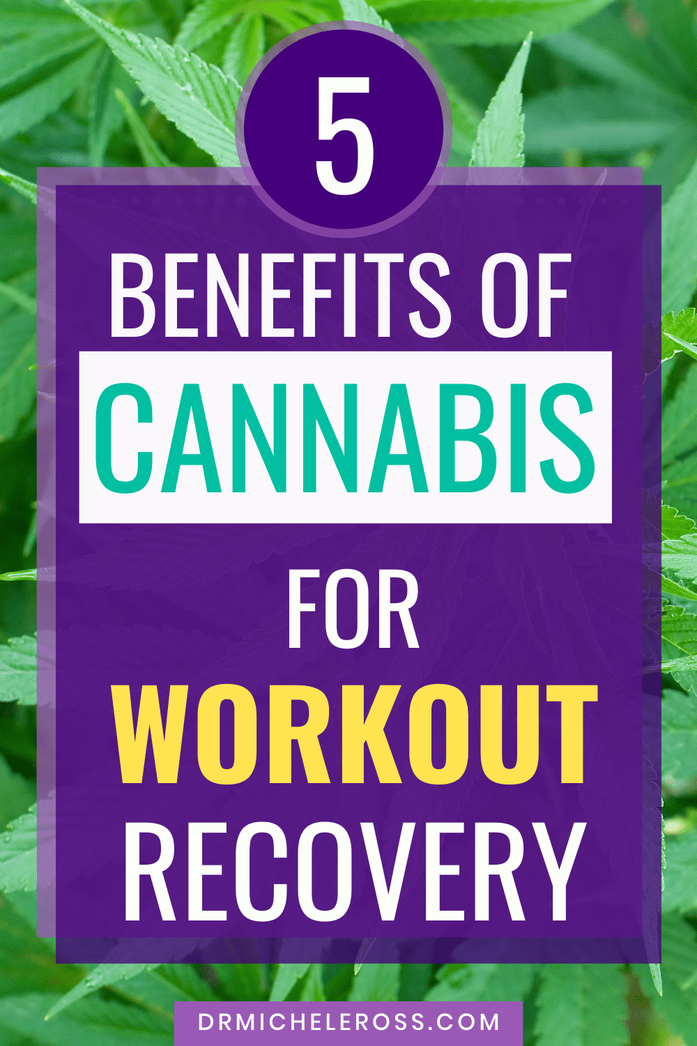 5 Benefits of Cannabis For Workout Recovery