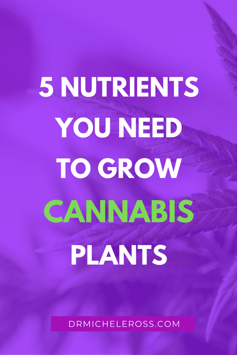 5 Nutrients You Need To Grow Cannabis Plants