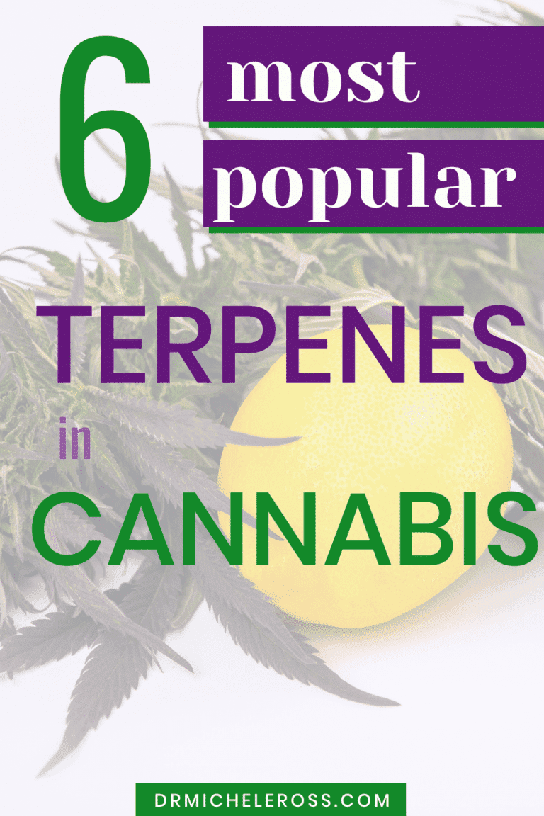 The 6 Most Popular Terpenes in Cannabis Strains