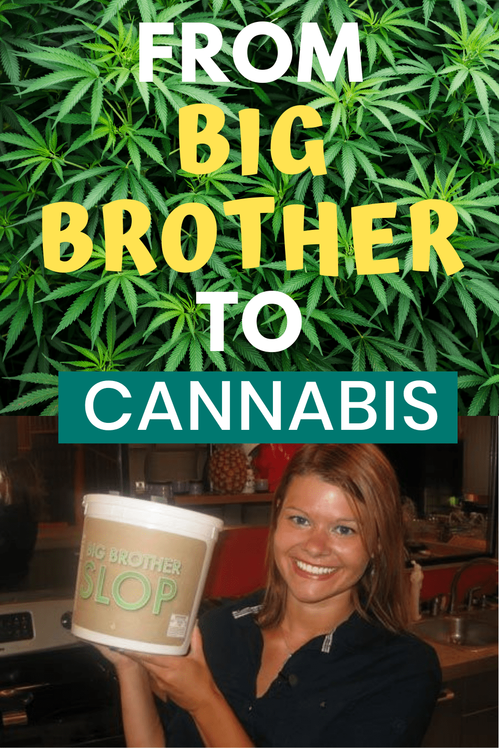 From Big Brother To Cannabis - Let Me Reintroduce Myself